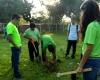 Reforestará la Preparatoria de Puerto Vallarta parques públicos con 20 mil árboles